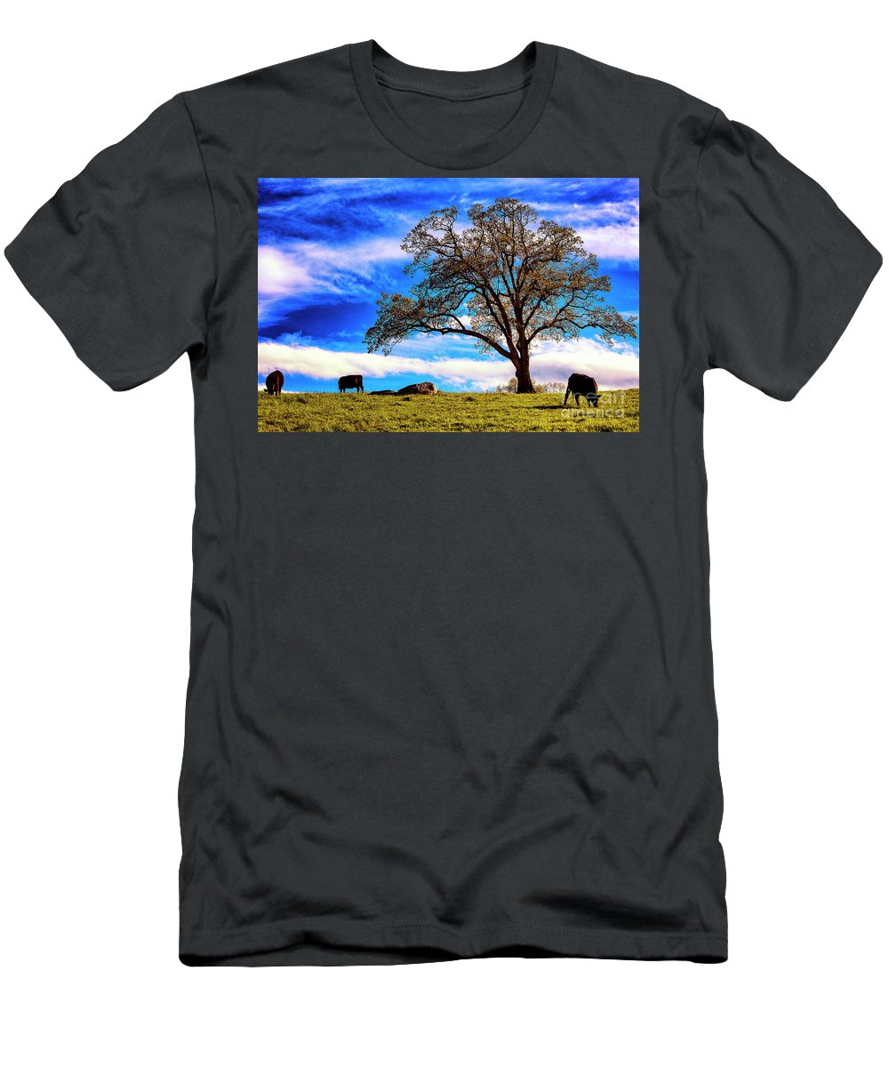 Farm Men's T-Shirt (Athletic Fit) featuring the photograph De Hoek Farm by Grant Dupill