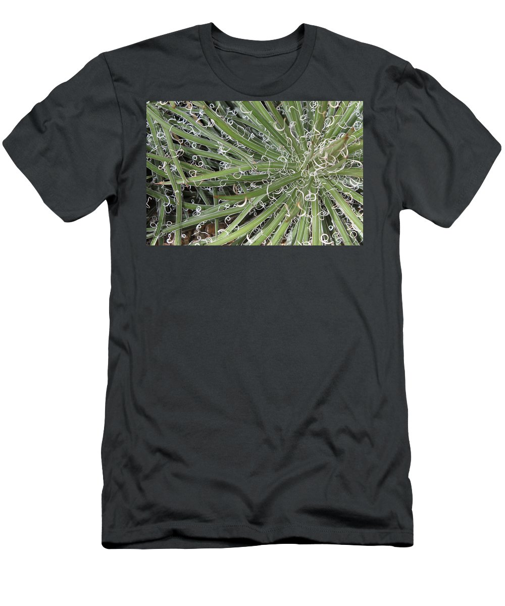 Nature T-Shirt featuring the photograph Decorations by Munir Alawi
