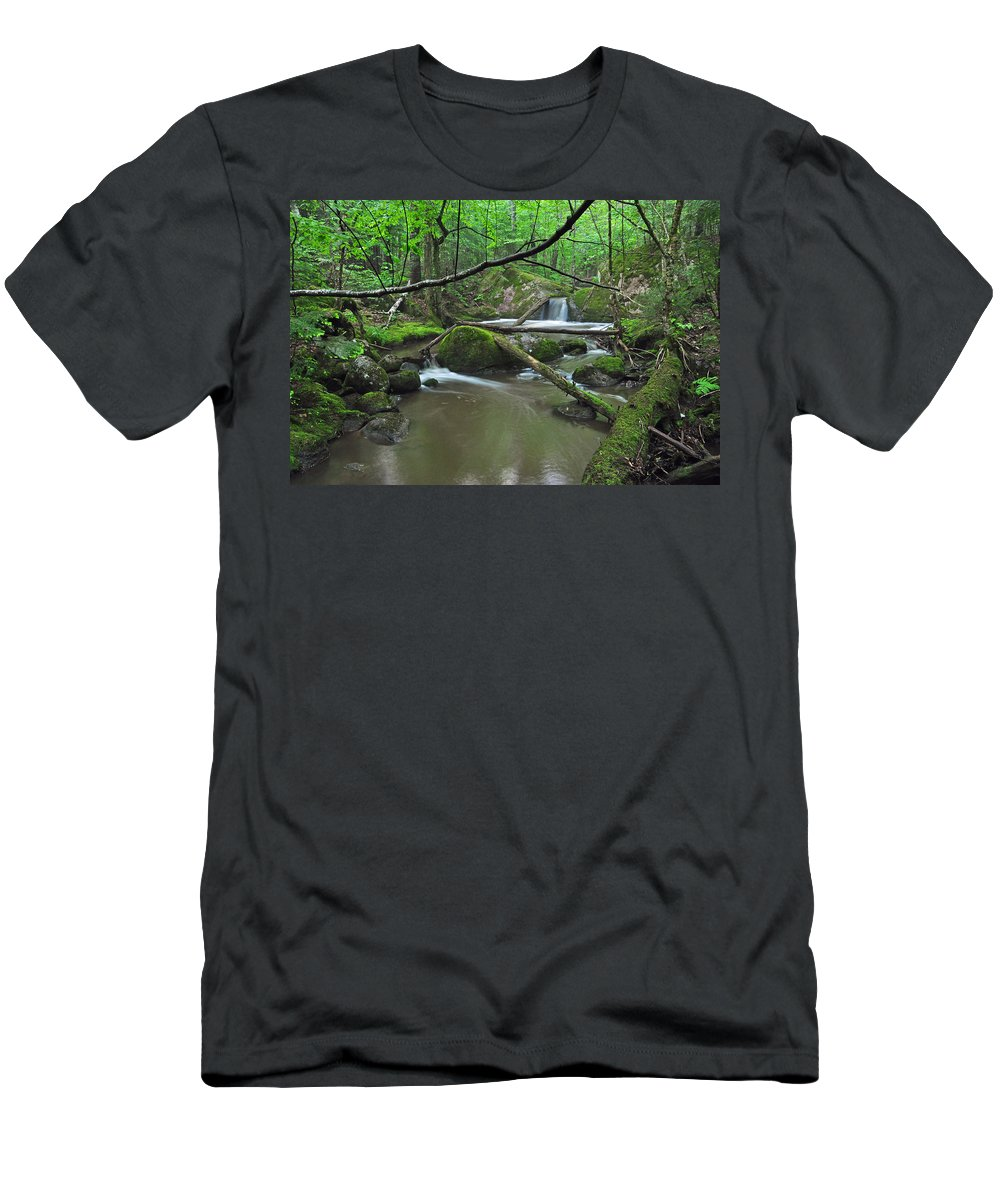 Stream Men's T-Shirt (Athletic Fit) featuring the photograph Deep Woods Stream 2 by Glenn Gordon