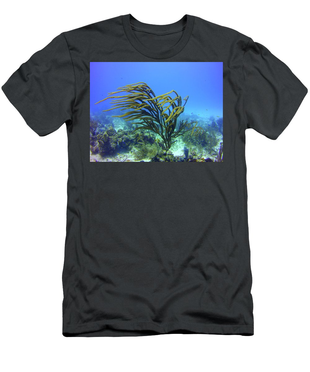 Deepwater Men's T-Shirt (Athletic Fit) featuring the photograph Deepwater Gorgonia Just Flowing In The Wind by Bob Foudriat