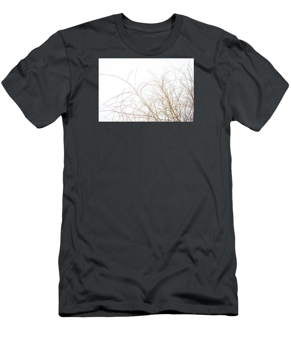 Abstract Men's T-Shirt (Athletic Fit) featuring the photograph Delicate January Tree Branches by Morgain Bailey