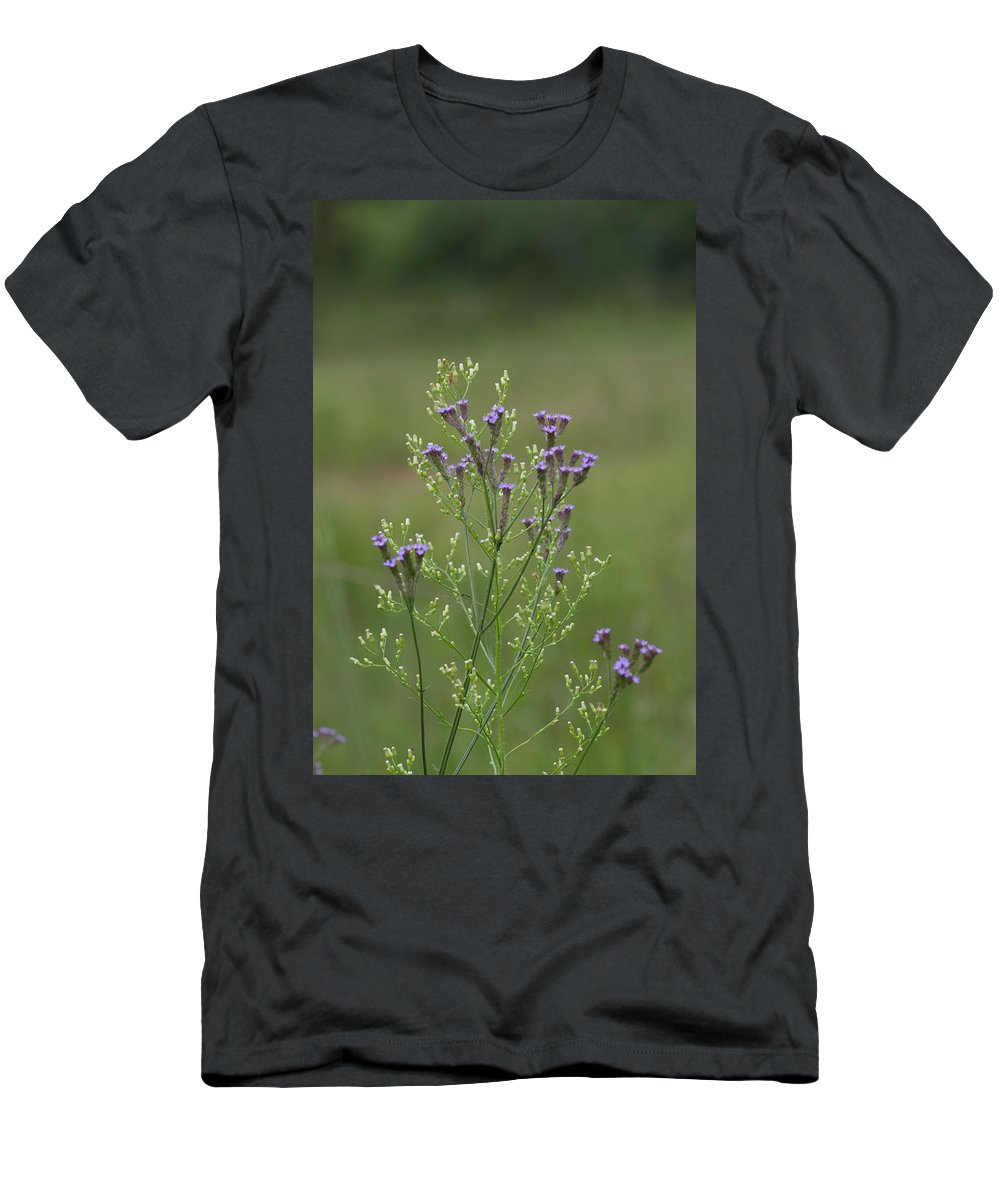 Verbena Men's T-Shirt (Athletic Fit) featuring the photograph Delicate Lavender Verbena Wildflowers by Kathy Clark