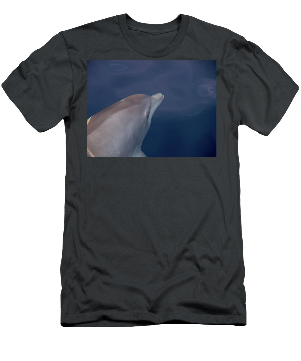 Valasretki Men's T-Shirt (Athletic Fit) featuring the photograph Delphin 4 by Jouko Lehto