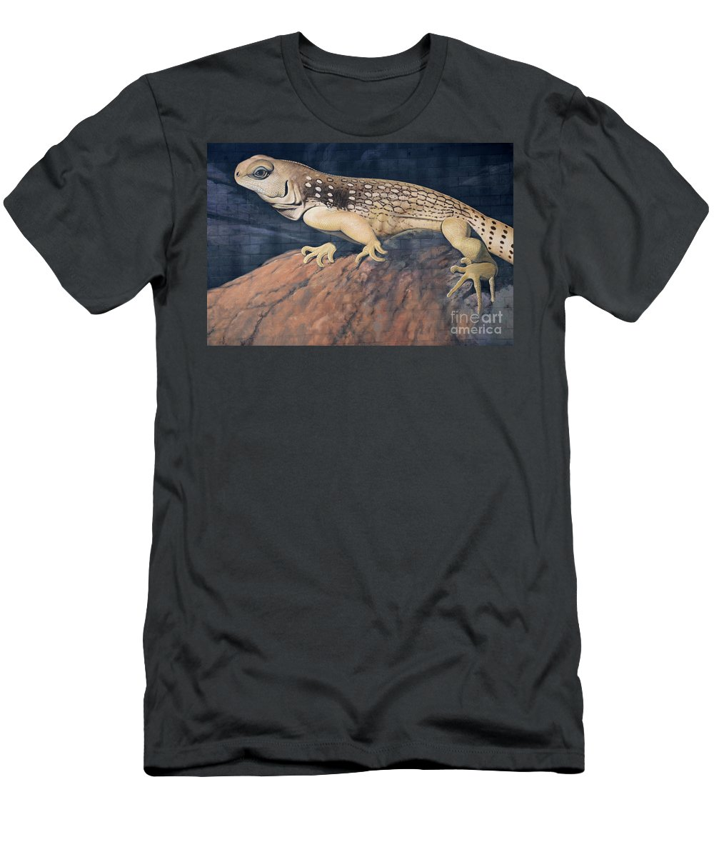 Mural Men's T-Shirt (Athletic Fit) featuring the photograph Desert Iguana Mural by Bob Christopher