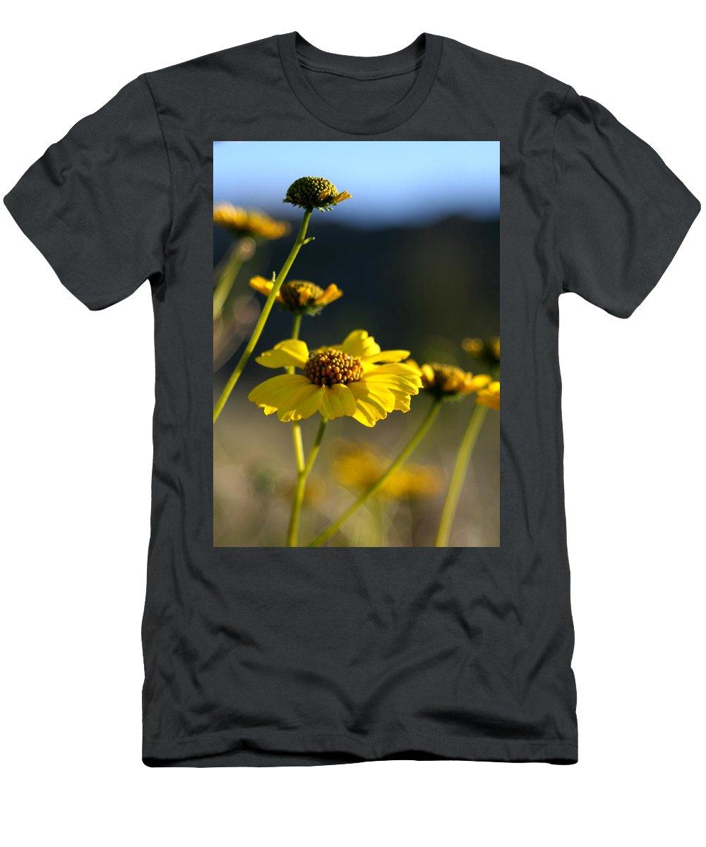 Desert Sunflower Men's T-Shirt (Athletic Fit) featuring the photograph Desert Sunflower by Chris Brannen
