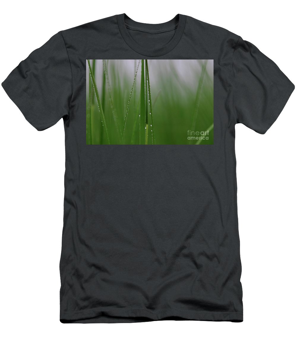 Grass Men's T-Shirt (Athletic Fit) featuring the photograph Dew Drops by Karol Livote