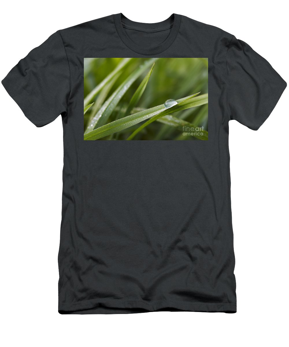 Grass Men's T-Shirt (Athletic Fit) featuring the photograph Dewy Drop On The Grass by Michal Boubin