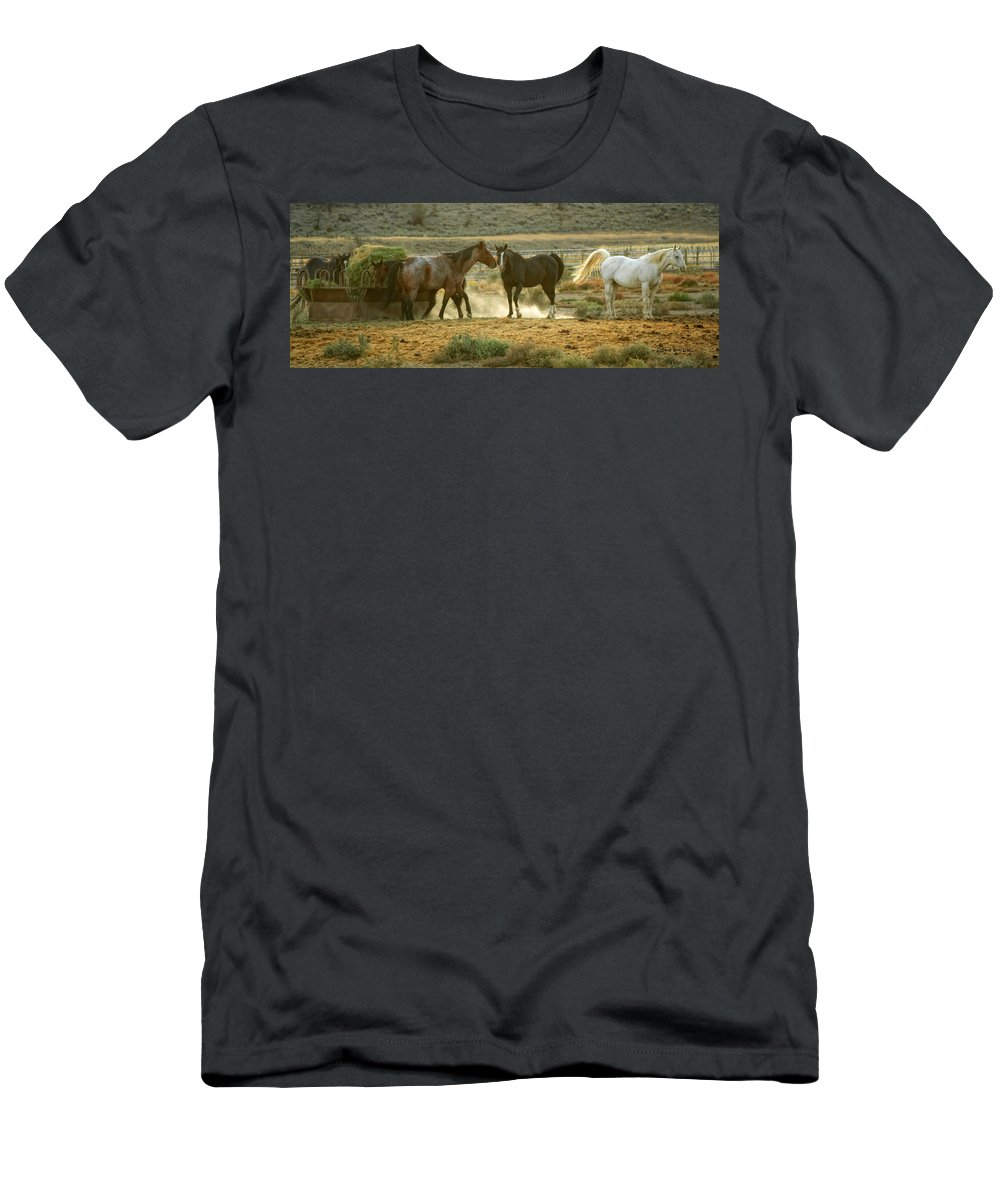 Horses Men's T-Shirt (Athletic Fit) featuring the photograph Dinner Time by Donna Blackhall