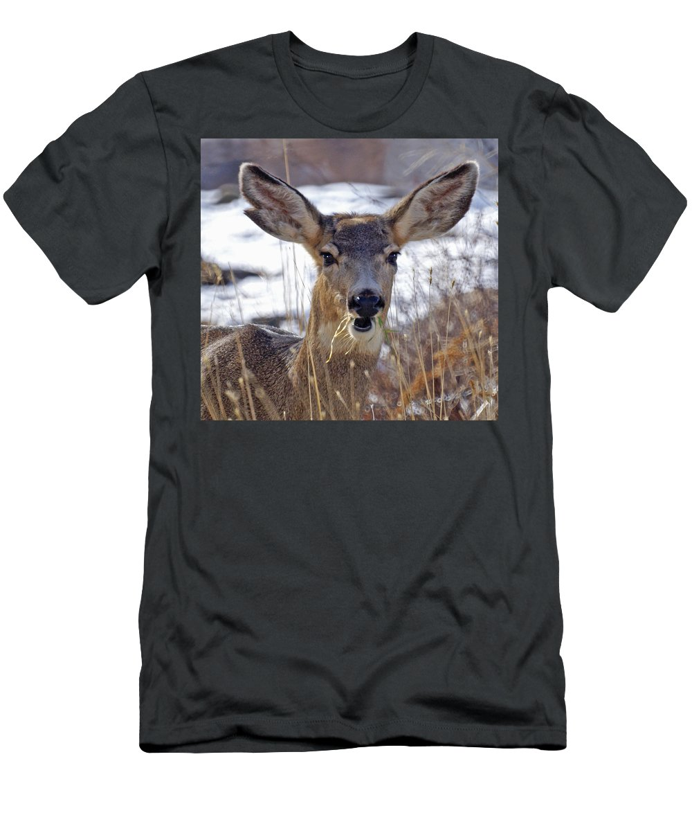 Doe Men's T-Shirt (Athletic Fit) featuring the photograph Doe by Heather Coen