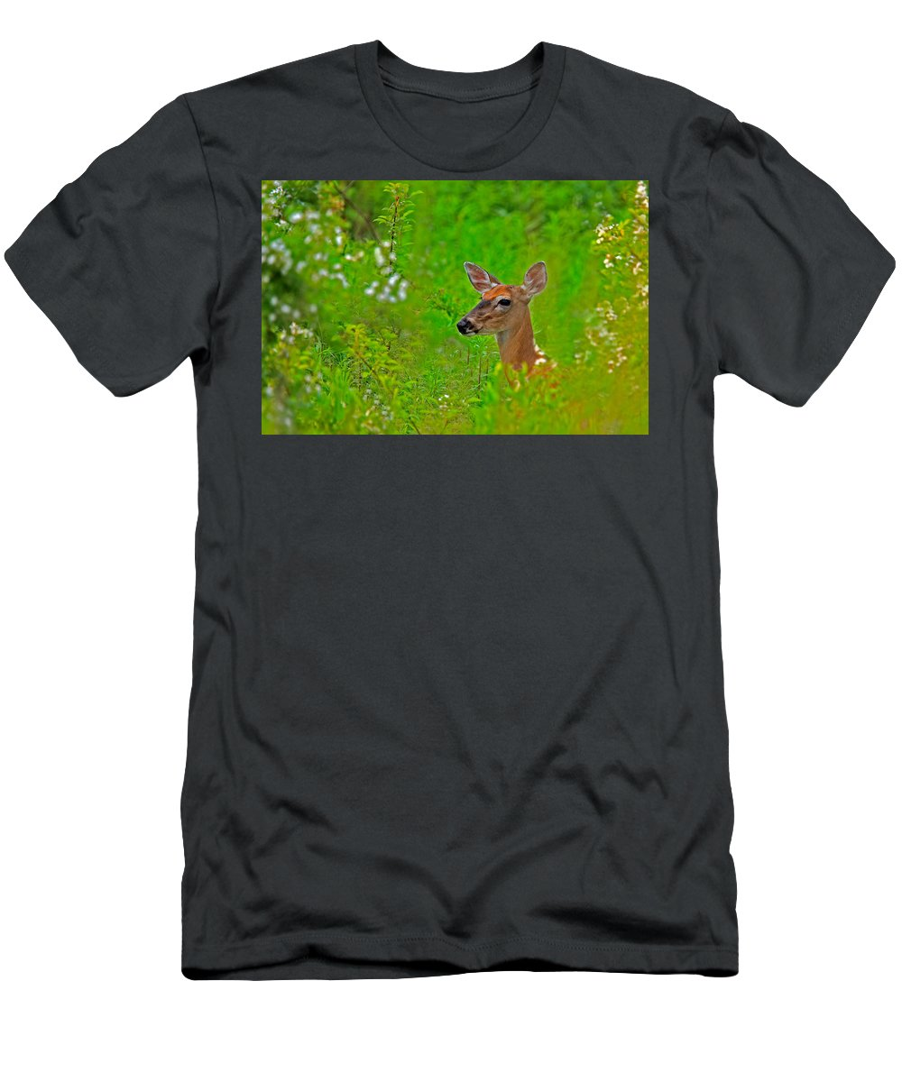 Deer Men's T-Shirt (Athletic Fit) featuring the photograph Doe In Springtime by William Jobes