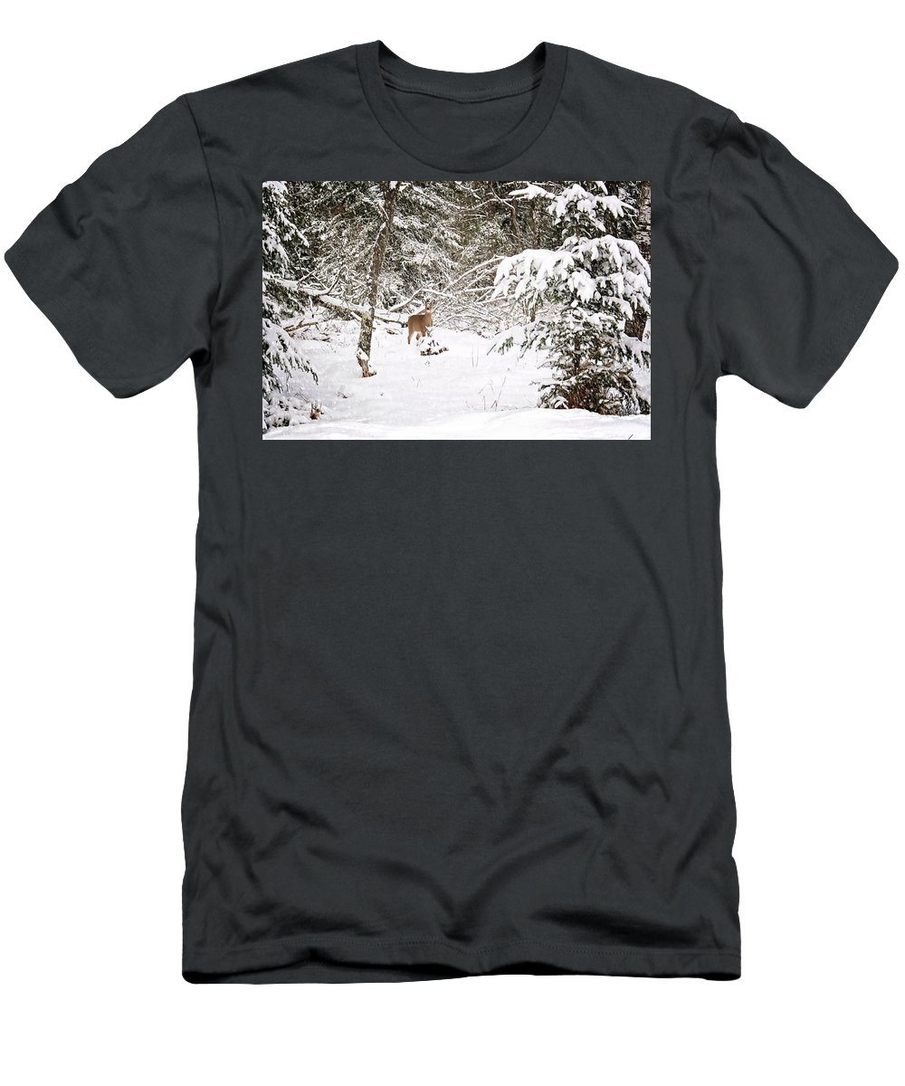 Doe In Winter Snow Print Men's T-Shirt (Athletic Fit) featuring the photograph Doe In Winter Snow by Gwen Gibson