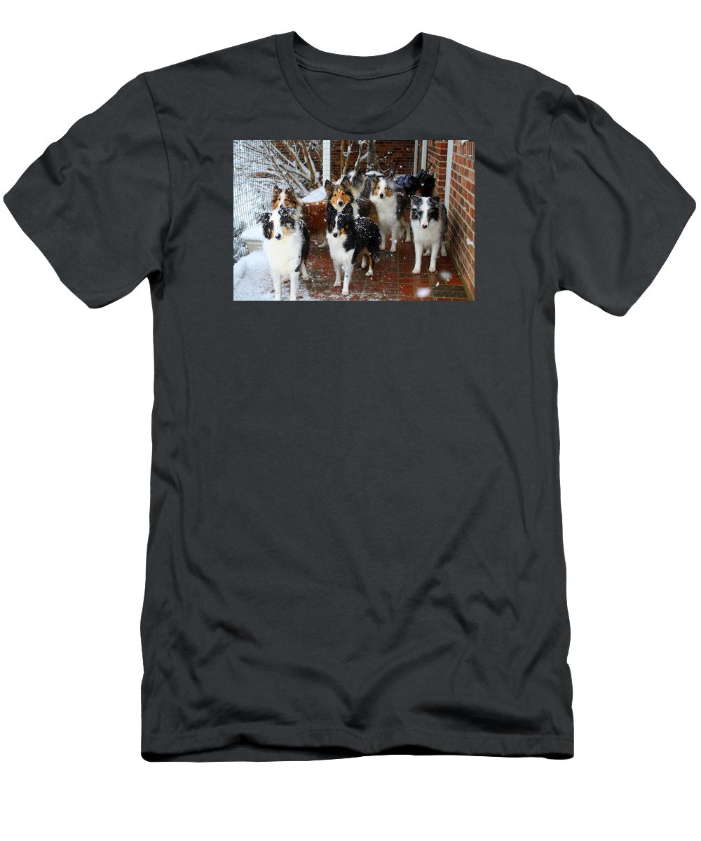 Dog Men's T-Shirt (Athletic Fit) featuring the photograph Dogs During Snowmageddon by Kathryn Meyer