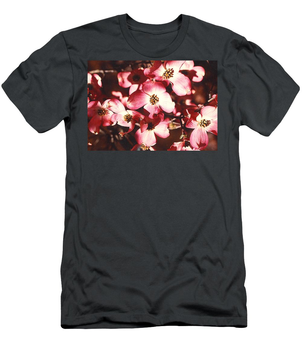 Dogwood Men's T-Shirt (Athletic Fit) featuring the photograph Dogwood Harmony by Nancy Mueller