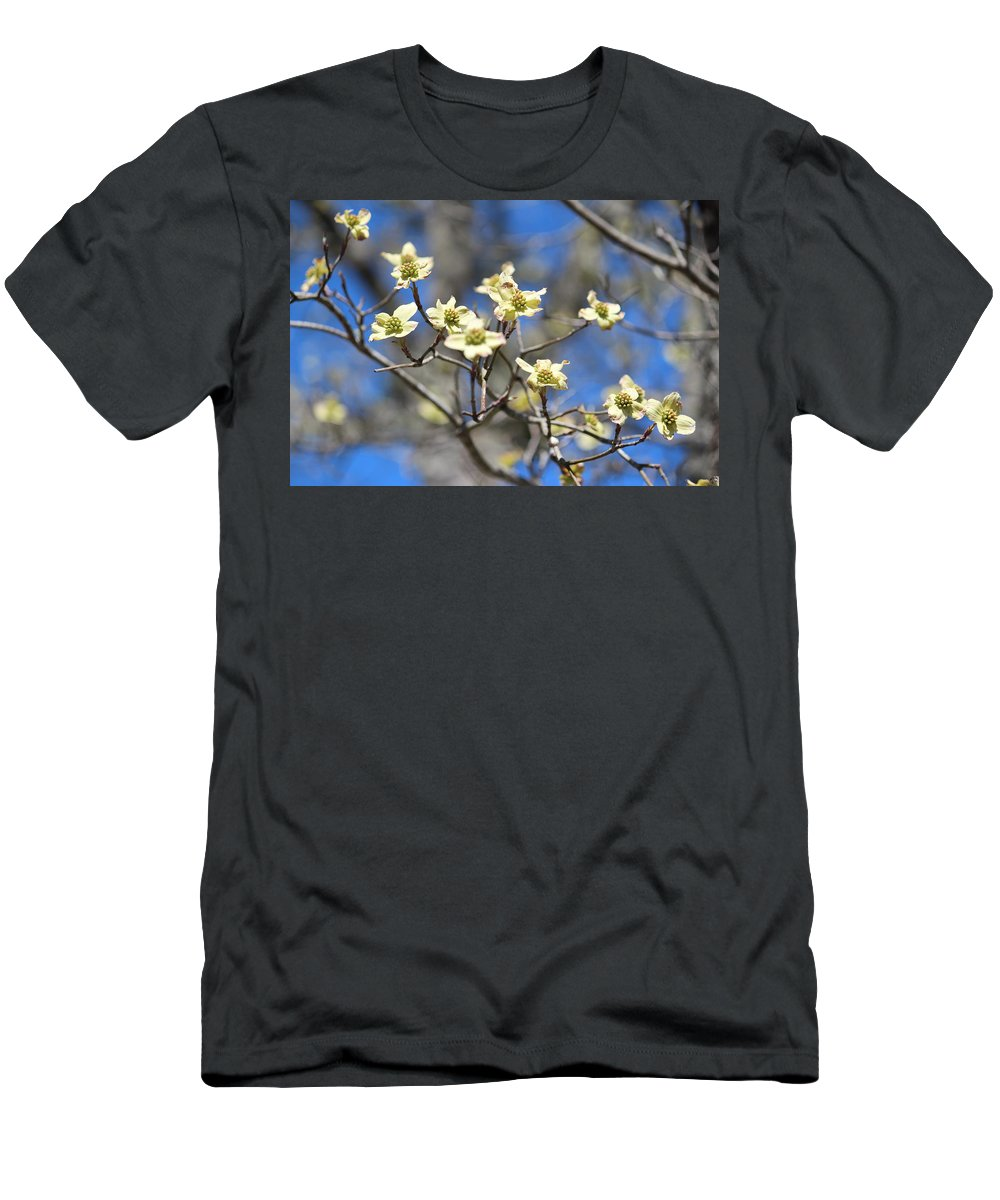 Dogwood Flower Men's T-Shirt (Athletic Fit) featuring the photograph Dogwood In Bloom by Cynthia Guinn
