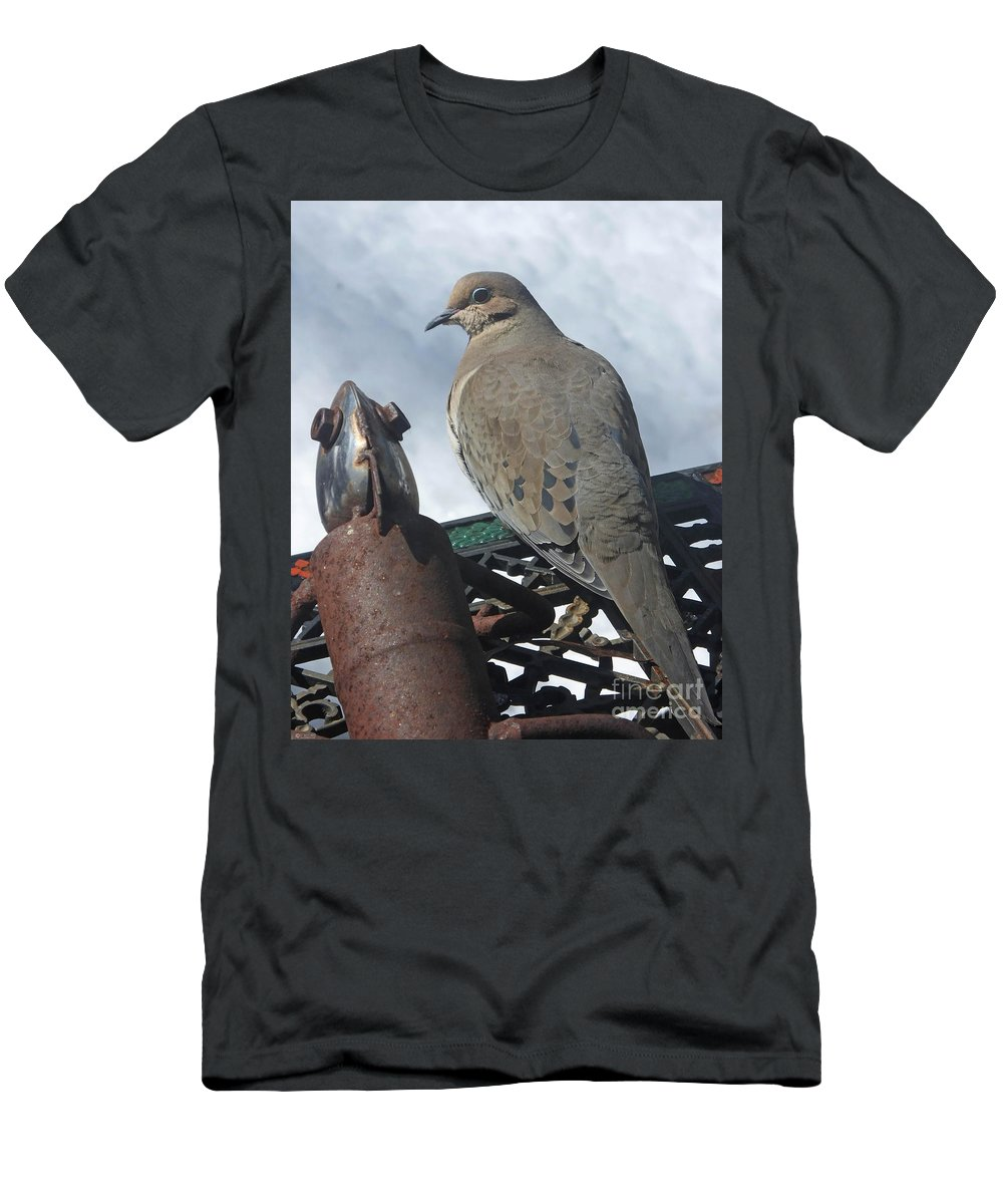 Dove Men's T-Shirt (Athletic Fit) featuring the photograph Doves New Pal by Lizi Beard-Ward