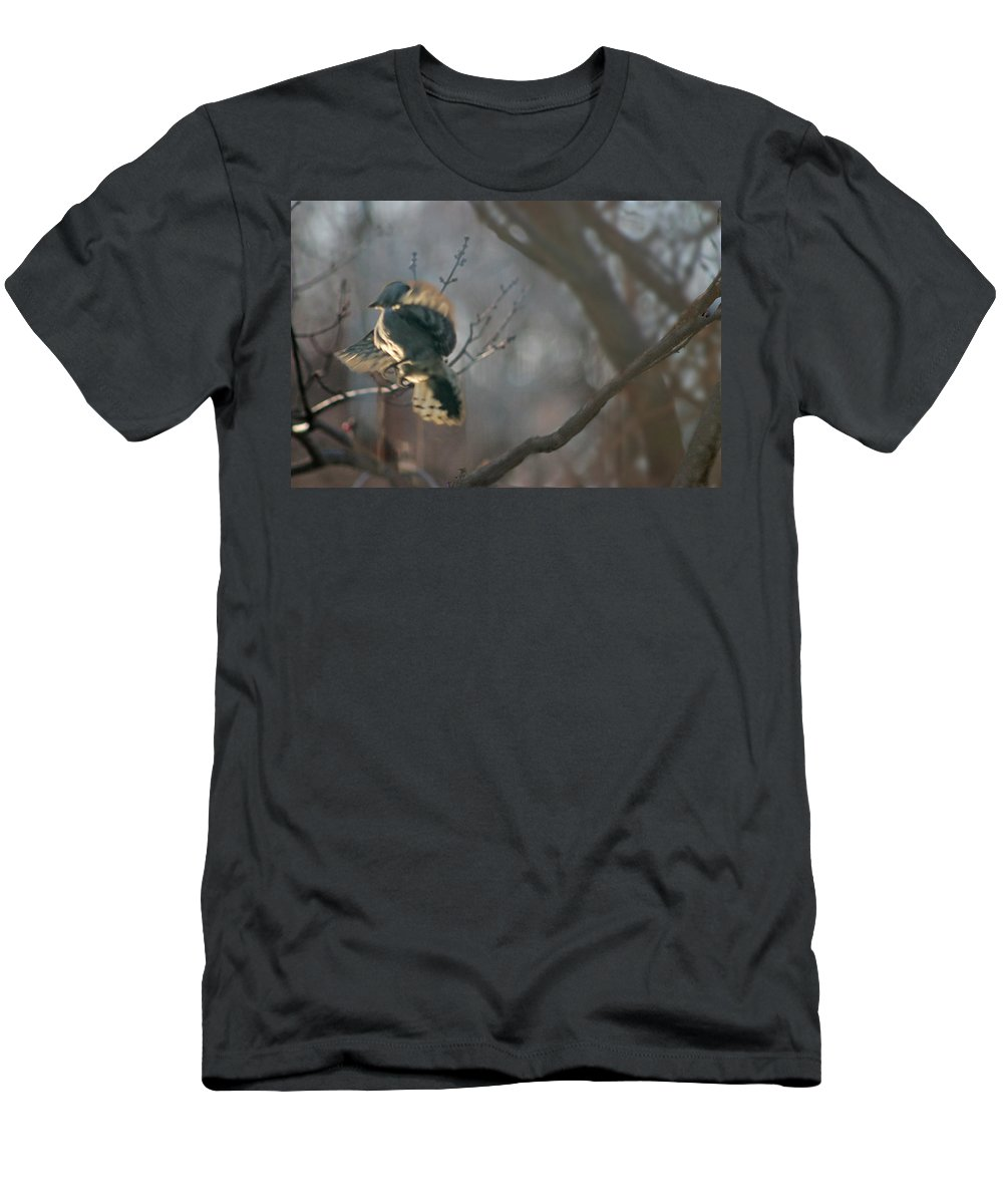 Nature Men's T-Shirt (Athletic Fit) featuring the photograph Downey Woodpecker by Steve Karol