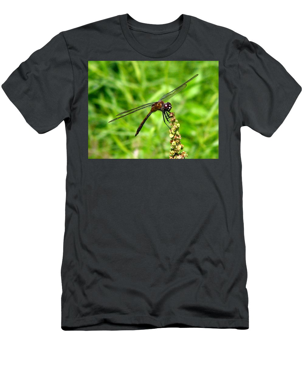 Dragonfly Men's T-Shirt (Athletic Fit) featuring the photograph Dragonfly 7 by J M Farris Photography