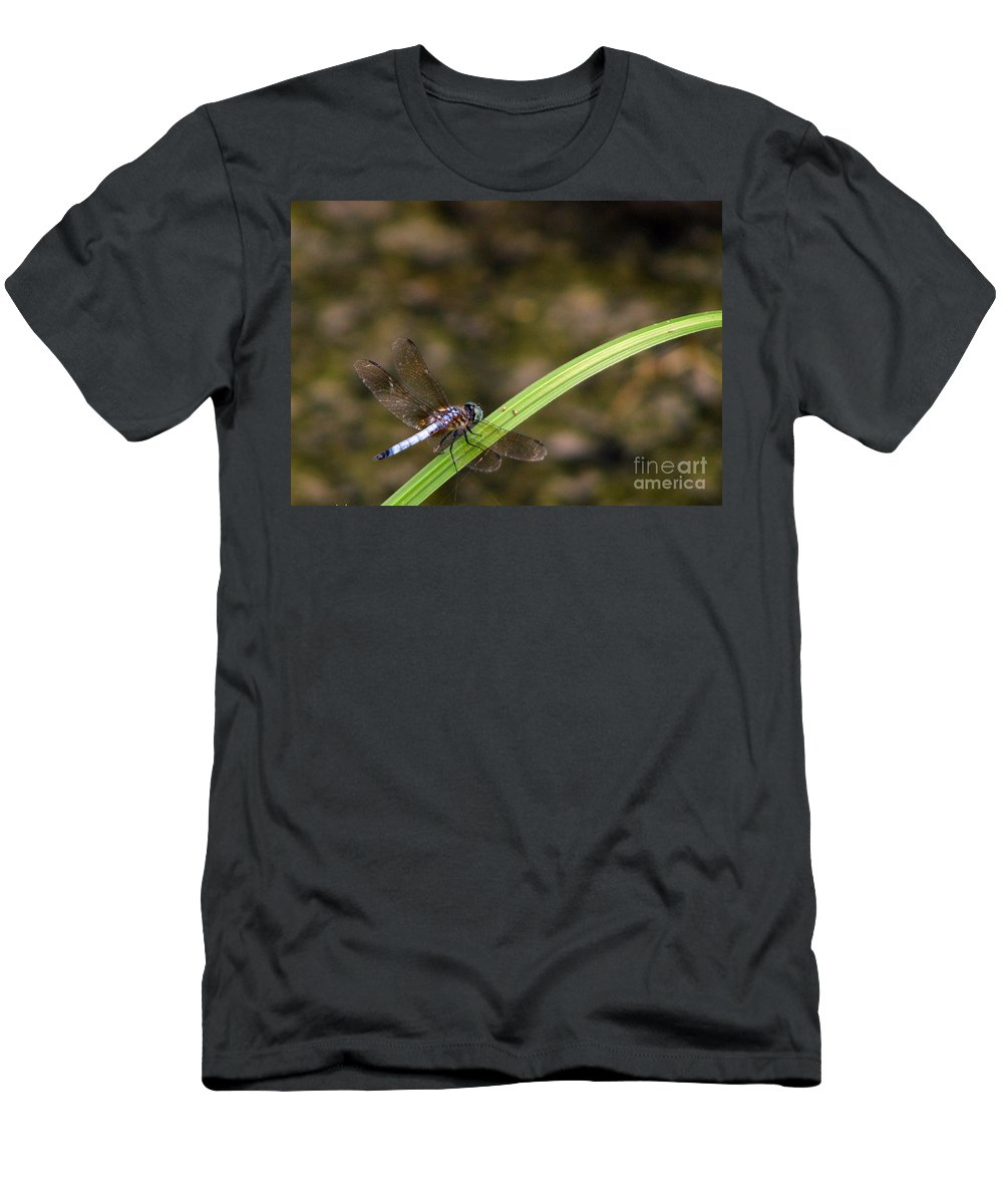 Dragonfly Men's T-Shirt (Athletic Fit) featuring the photograph Dragonfly by Amanda Barcon