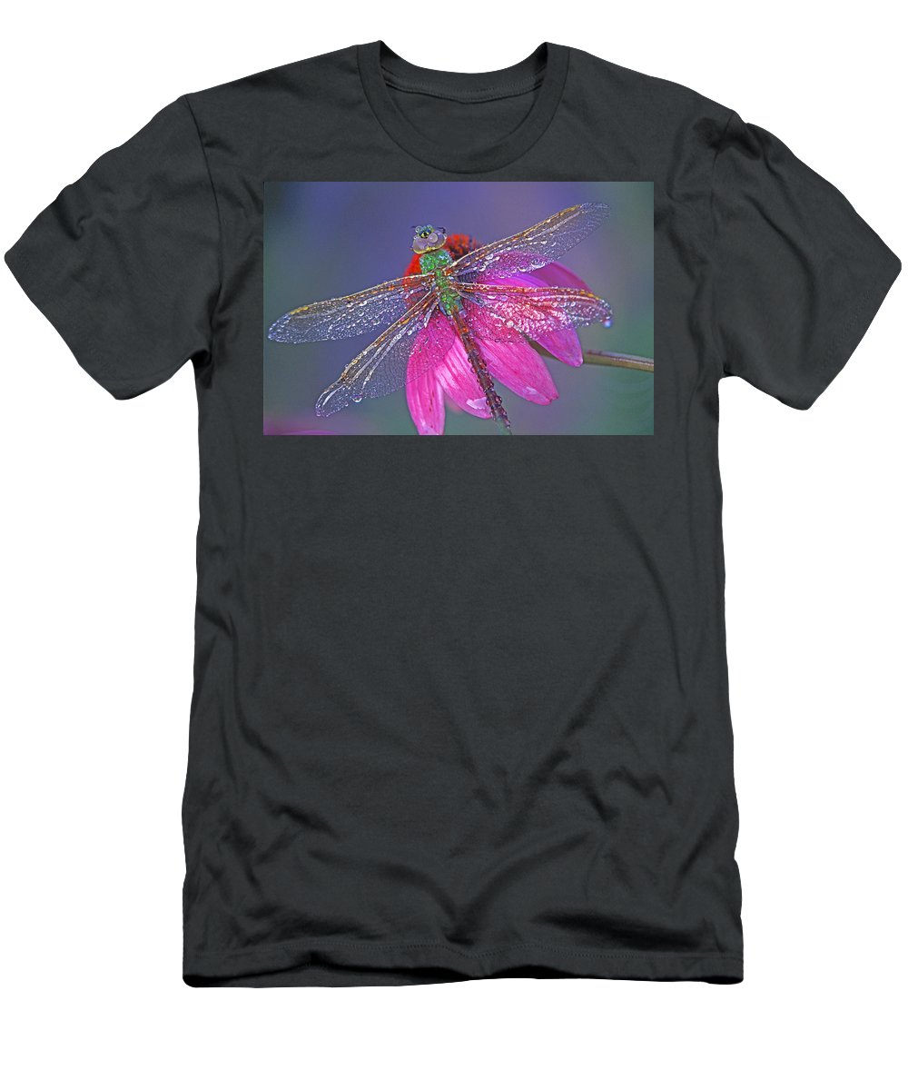 Dew Covered Dragonfly Rests On Purple Cone Flower Men's T-Shirt (Athletic Fit) featuring the photograph Dreaming Dragon by Bill Morgenstern