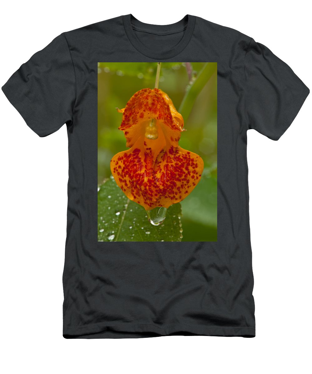 Wildflowers Men's T-Shirt (Athletic Fit) featuring the photograph Dripping Wet #2 by Irwin Barrett