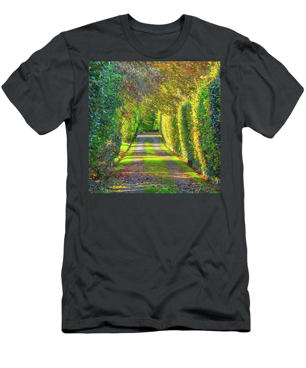 Driveway Men's T-Shirt (Athletic Fit) featuring the photograph Drive Into Autumn by A J Paul