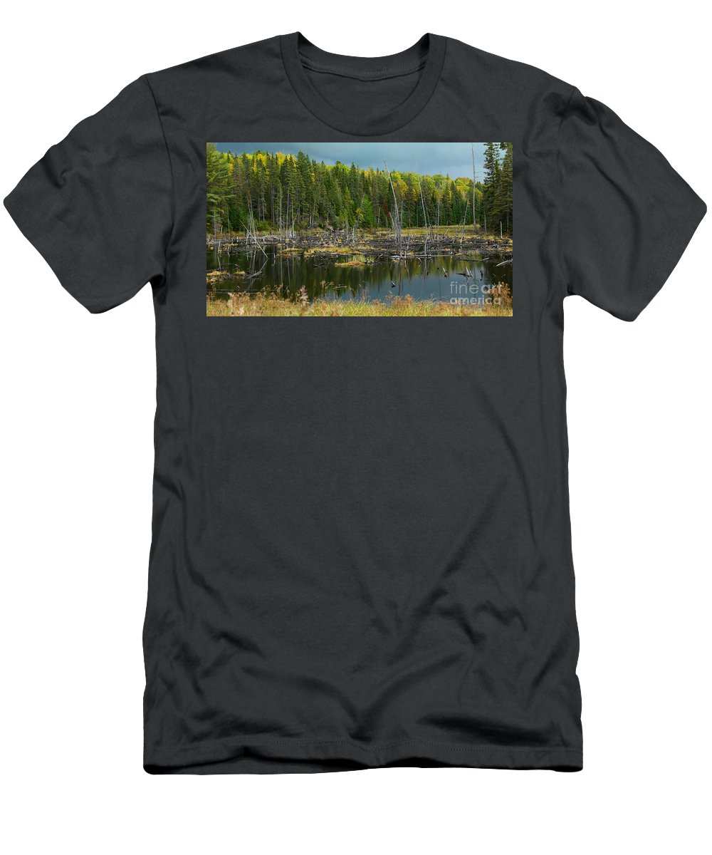 Drowned Trees Men's T-Shirt (Athletic Fit) featuring the photograph Drowned Trees by Oleksiy Maksymenko