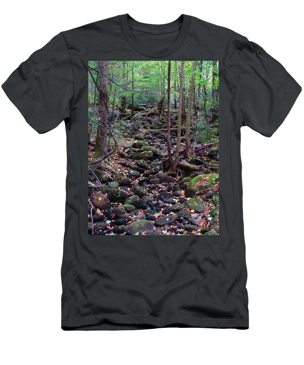River Men's T-Shirt (Athletic Fit) featuring the photograph Dry River Bed- Autumn by Nancy Mueller