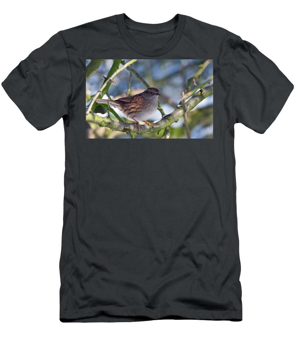 Bird Men's T-Shirt (Athletic Fit) featuring the photograph Dunnock On A Snowy Day In Winter by Bob Kemp