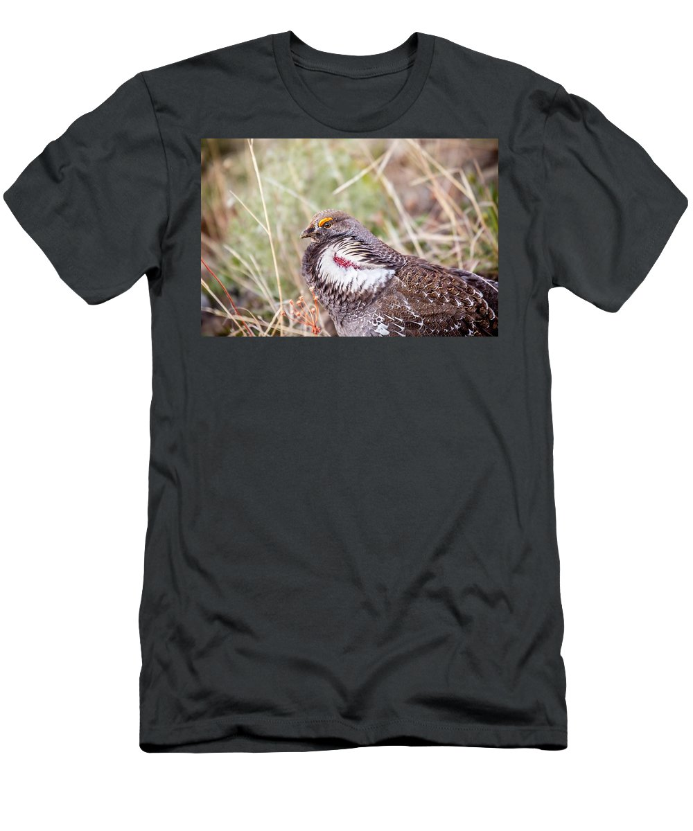 #duskygrouse Men's T-Shirt (Athletic Fit) featuring the photograph Dusky Grouse by Gemdelin Jackson