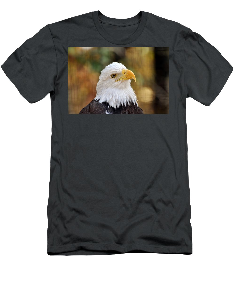Eagle Men's T-Shirt (Athletic Fit) featuring the photograph Eagle 9 by Marty Koch
