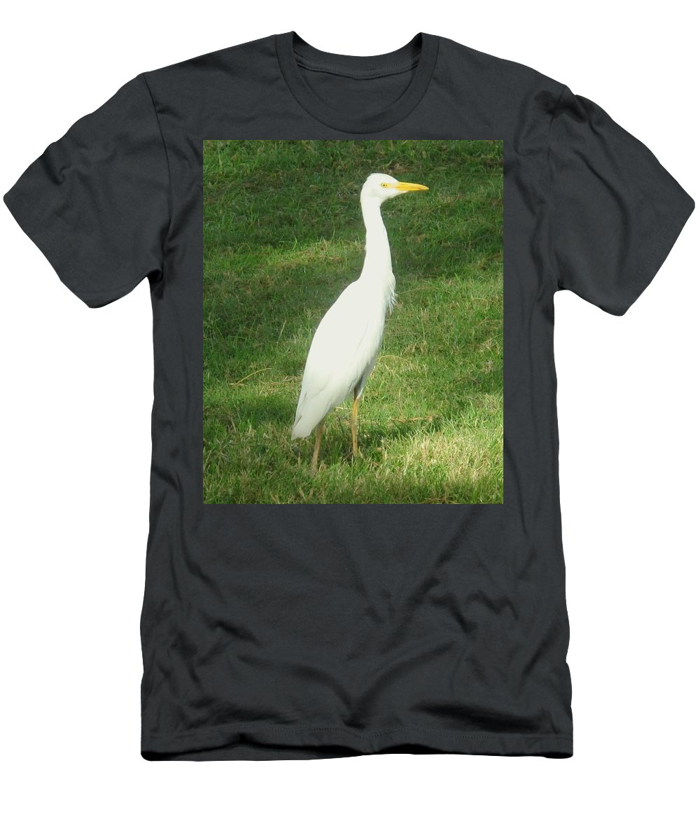 Egret Men's T-Shirt (Athletic Fit) featuring the photograph Egret Posing by Ian MacDonald
