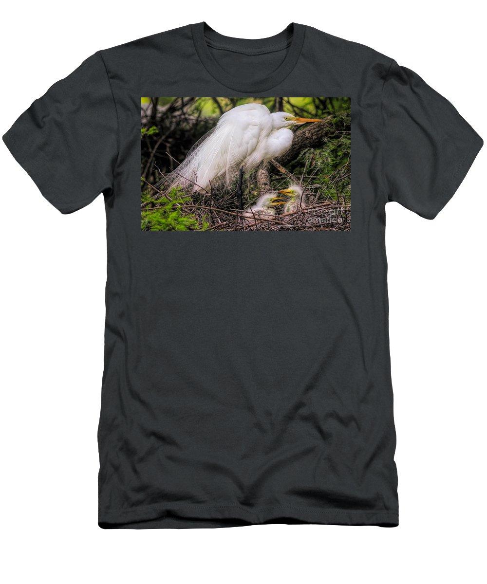 Great White Egret Men's T-Shirt (Athletic Fit) featuring the photograph Egrets - 3362 by Paulette Thomas