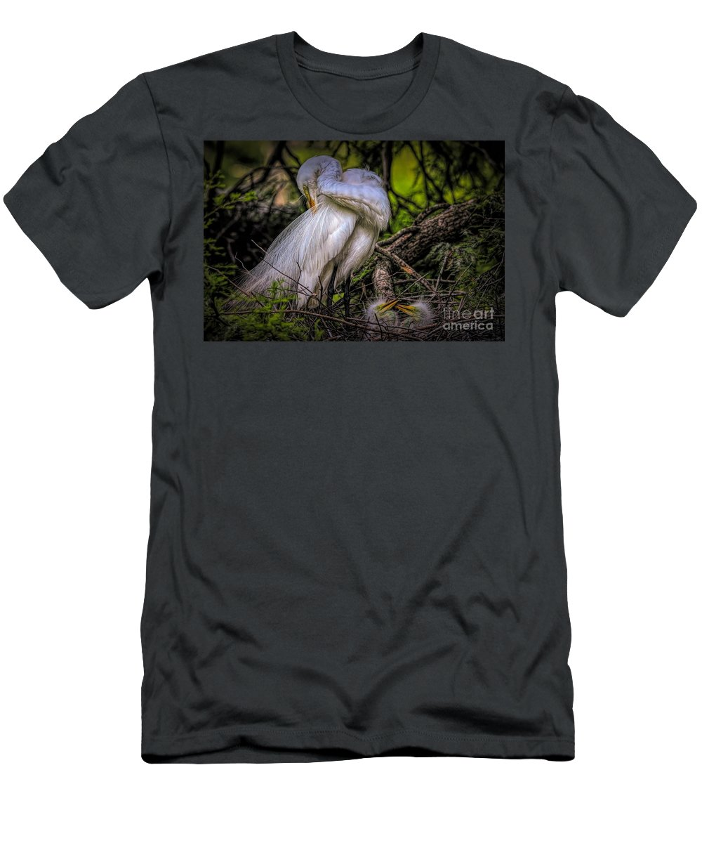 Great White Egret Men's T-Shirt (Athletic Fit) featuring the photograph Egrets - 3399 by Paulette Thomas