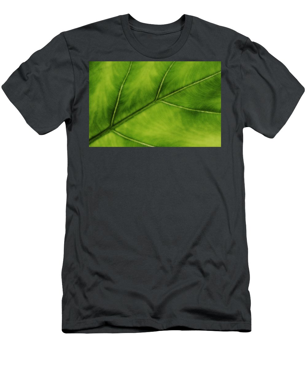 Leaf Men's T-Shirt (Athletic Fit) featuring the photograph Elephant Ear by Marilyn Hunt