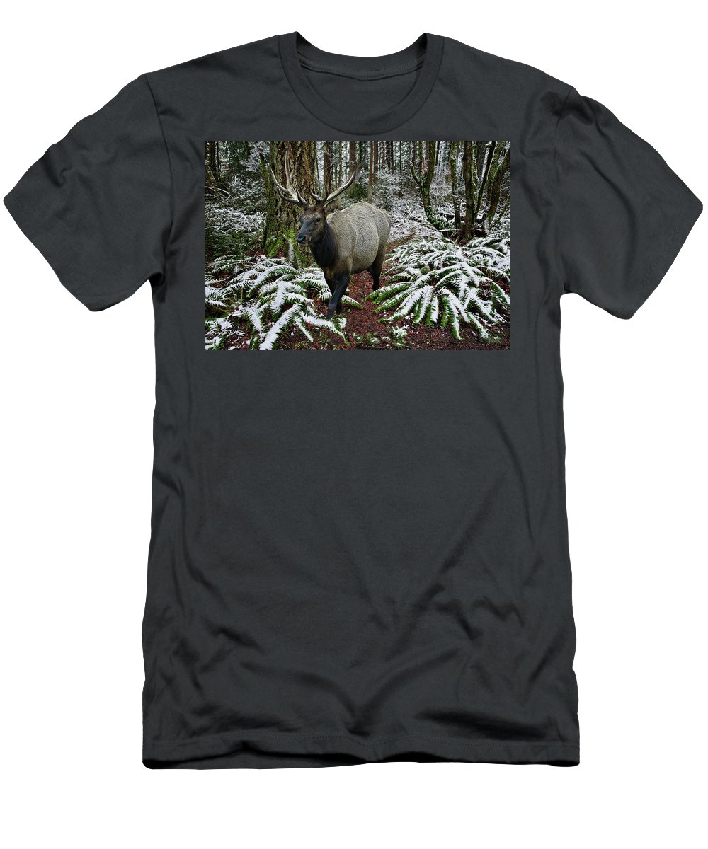 Elk Men's T-Shirt (Athletic Fit) featuring the digital art Elk In Winter by John Christopher