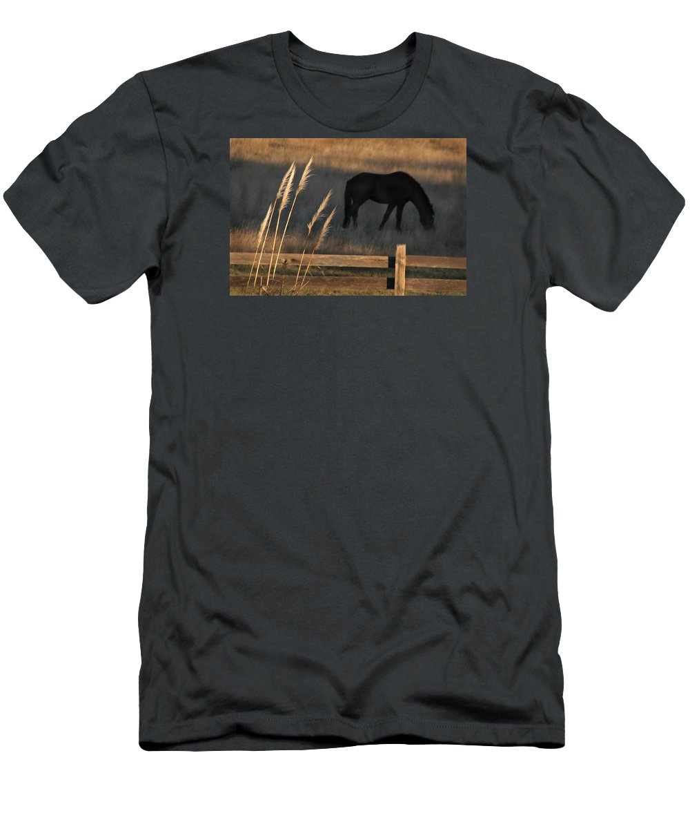 Horse Men's T-Shirt (Athletic Fit) featuring the photograph Equine Evening N. California by Michael Ziegler