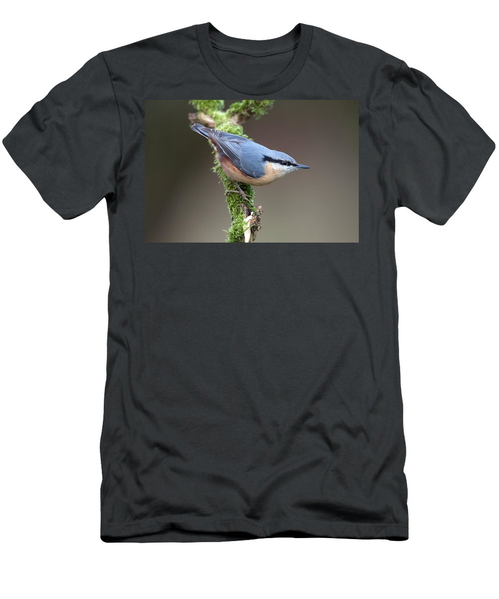 Nuthatch Men's T-Shirt (Athletic Fit) featuring the photograph European Nuthatch by Bob Kemp