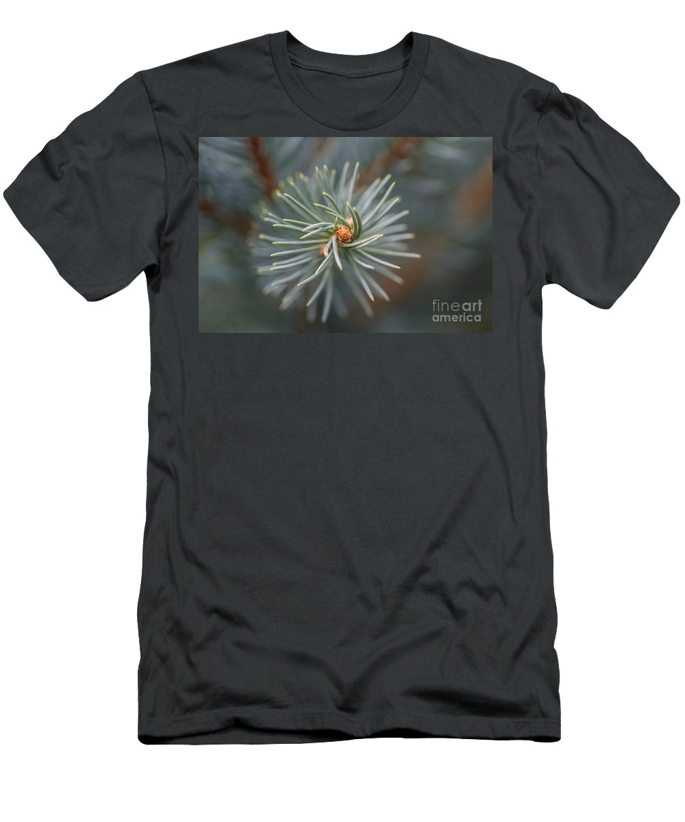 Colorado Men's T-Shirt (Athletic Fit) featuring the photograph Eye Of The Pine by Ashley M Conger