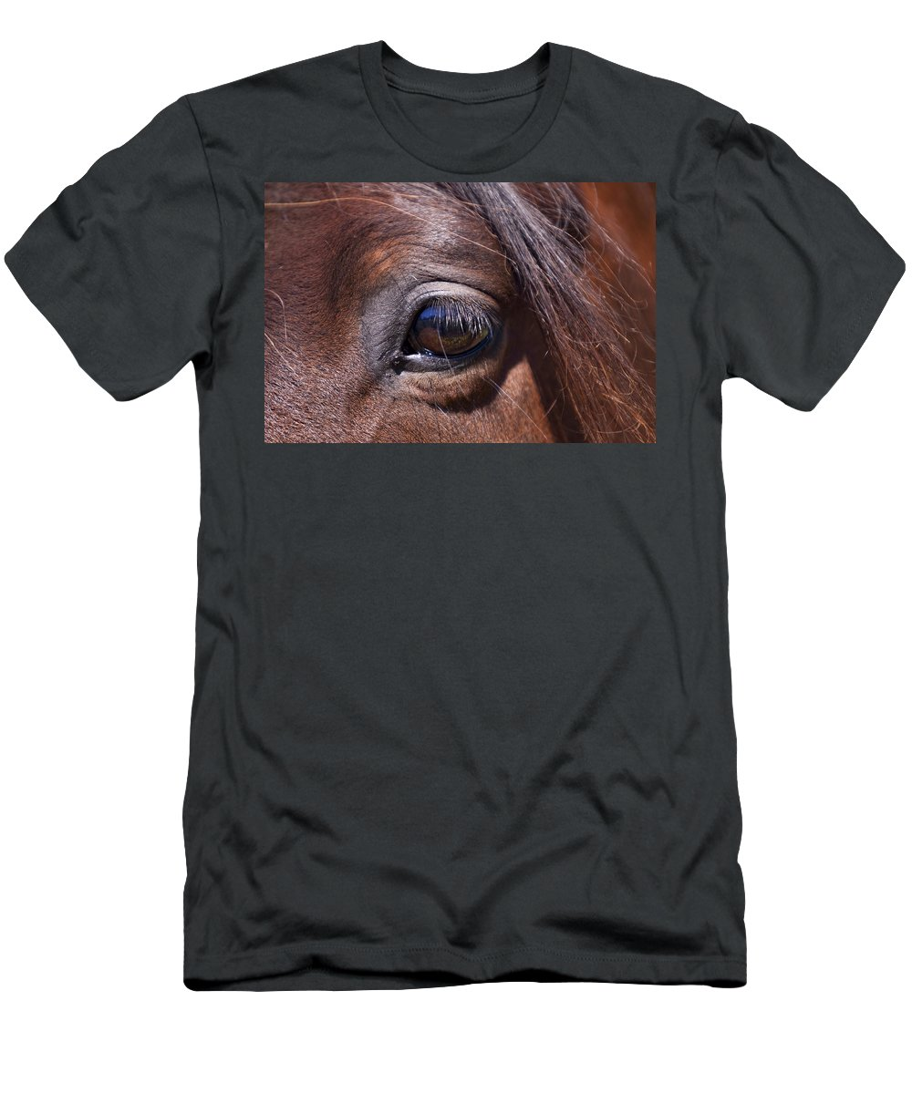 Horses Men's T-Shirt (Athletic Fit) featuring the photograph Eye See You by Michelle Wrighton