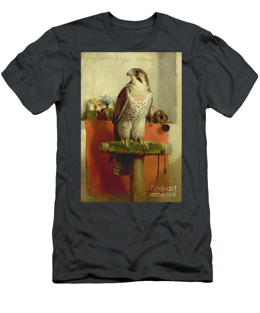 Falcon Men's T-Shirt (Athletic Fit) featuring the painting Falcon by Sir Edwin Landseer