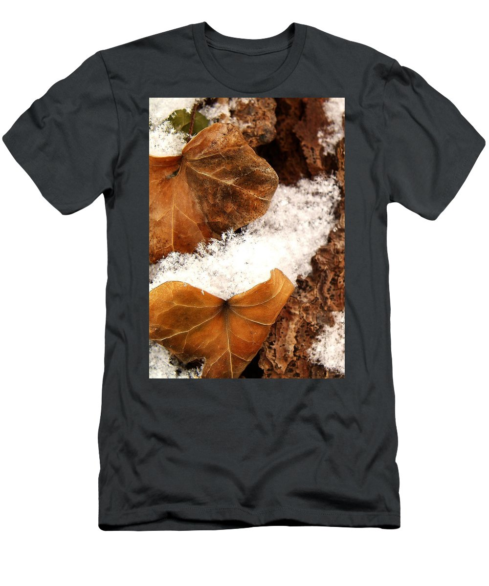 Fall Men's T-Shirt (Athletic Fit) featuring the photograph Fall And Winter by Gaby Swanson