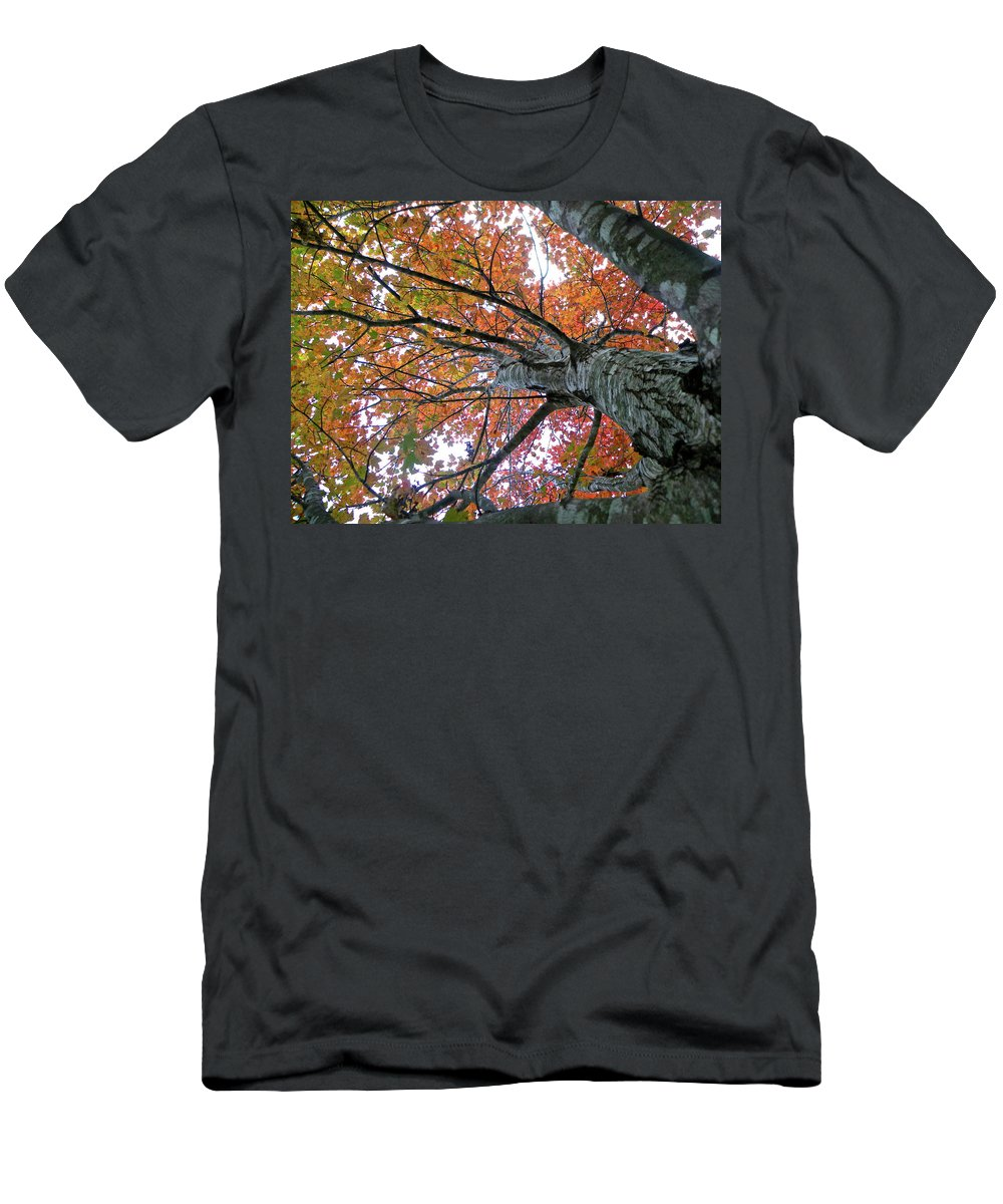 Tree Men's T-Shirt (Athletic Fit) featuring the photograph Fall by Shannon Turek