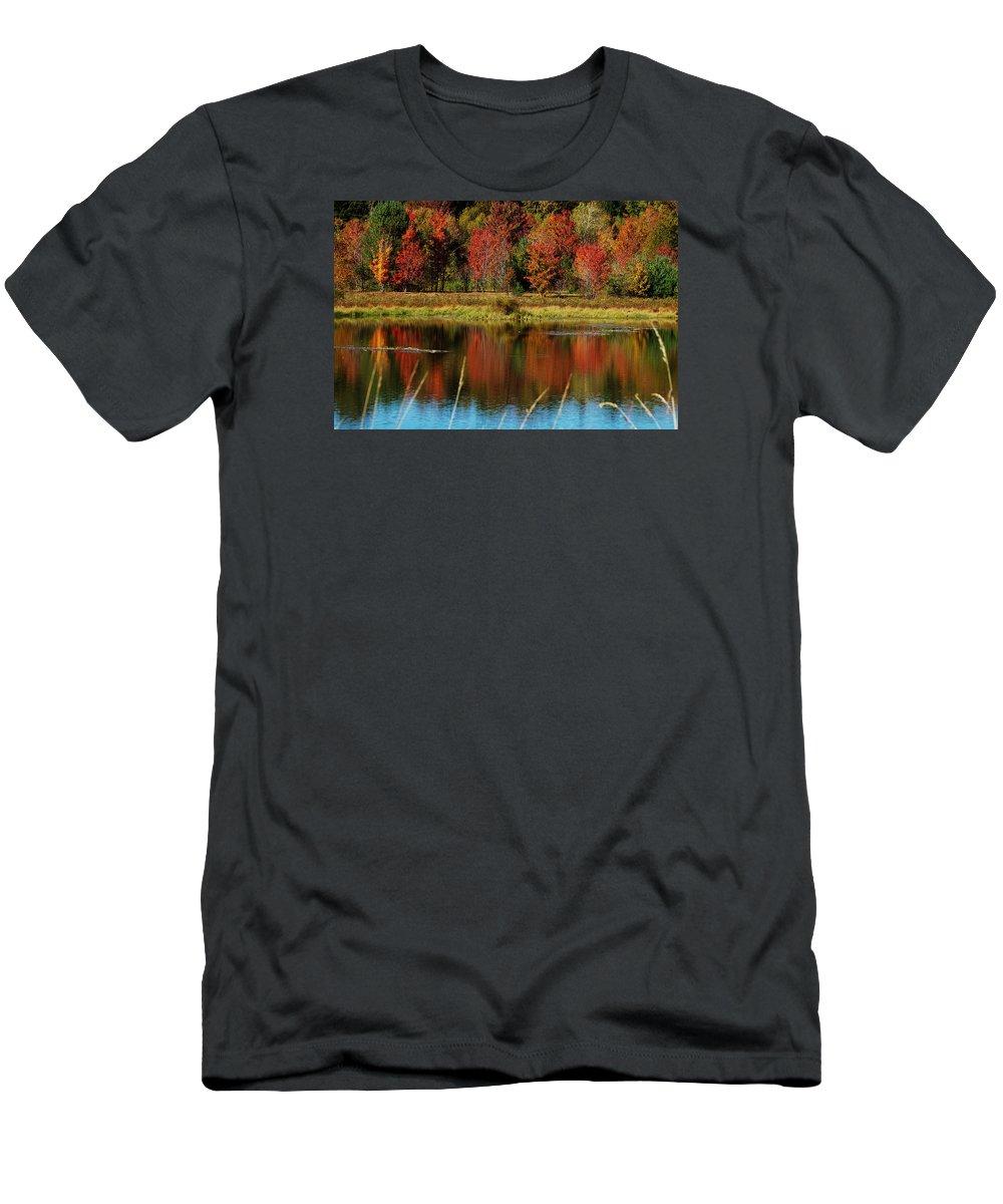 Autumn T-Shirt featuring the photograph Fall Splendor by Linda Murphy