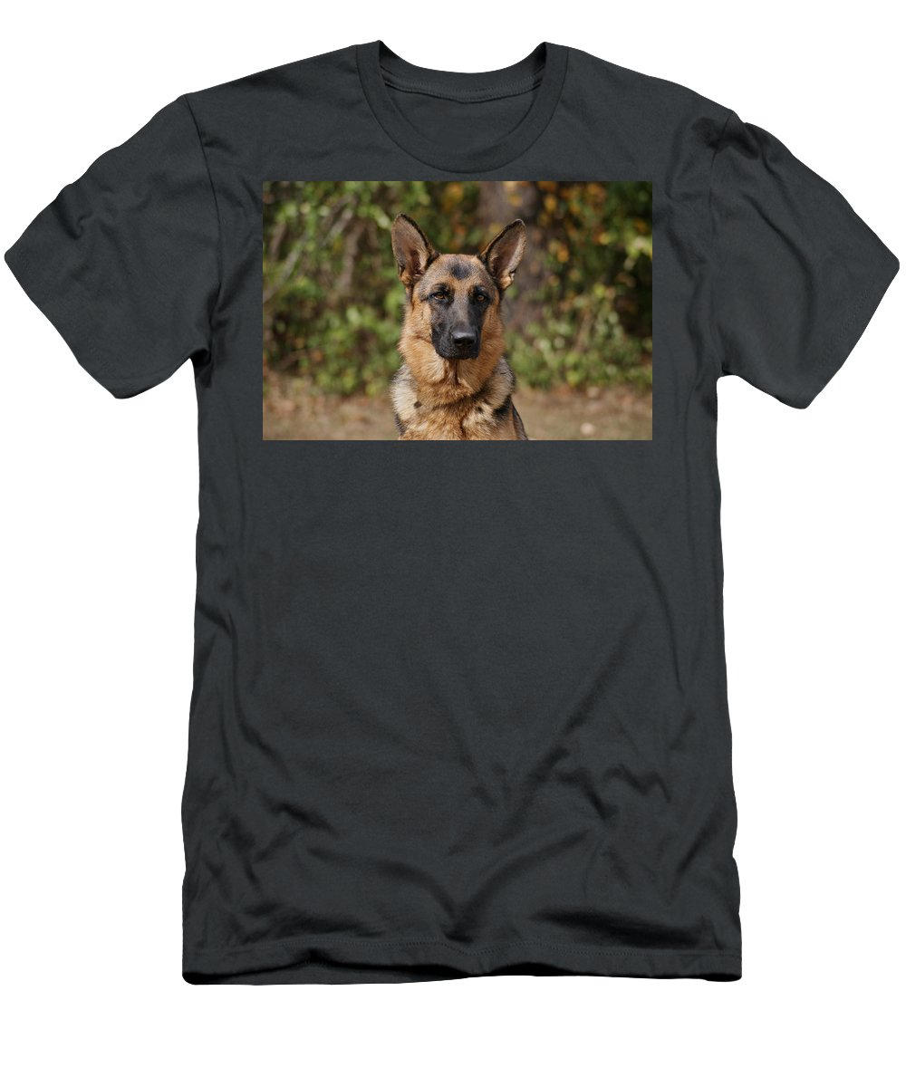 German Shepherd Dog Men's T-Shirt (Athletic Fit) featuring the photograph Fancy by Sandy Keeton