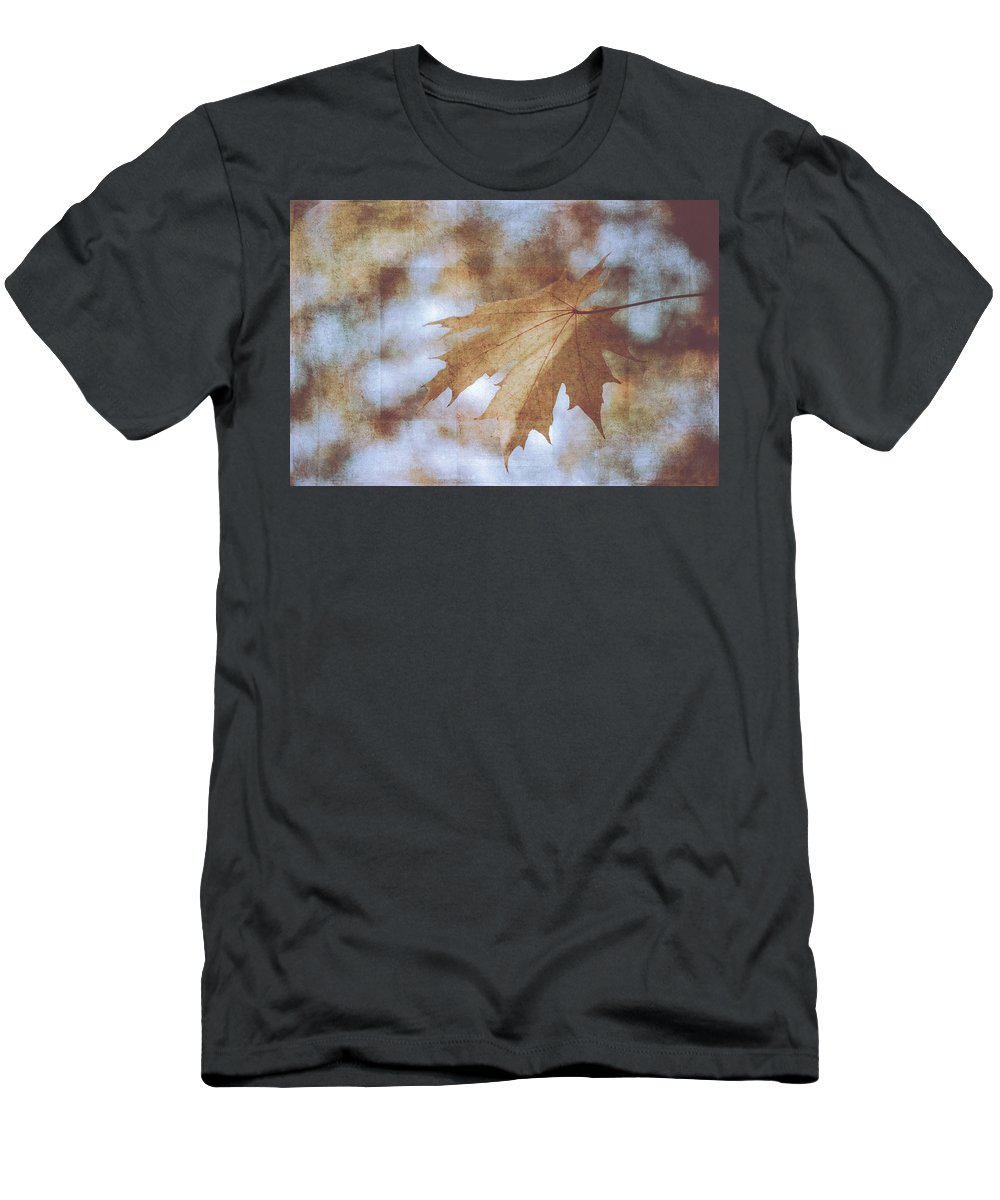Fall Men's T-Shirt (Athletic Fit) featuring the photograph Farewell Summer by Ari Salmela
