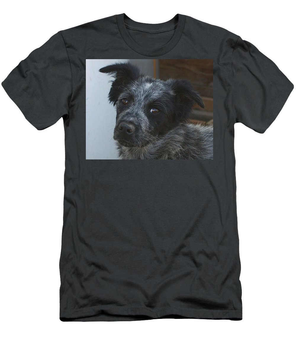 Canines Men's T-Shirt (Athletic Fit) featuring the photograph Farm Puppy by Jeff Swan