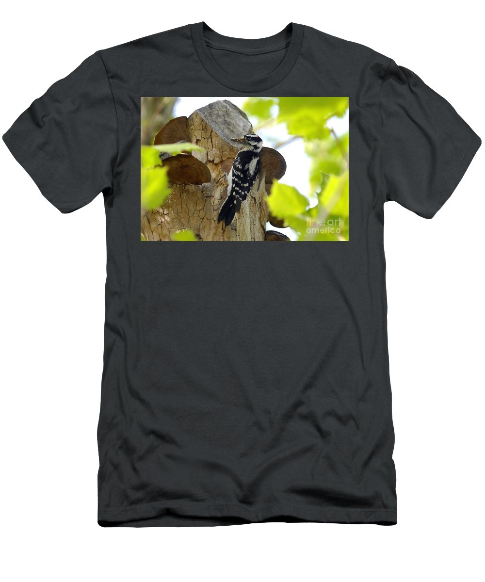 Downy Woodpecker Men's T-Shirt (Athletic Fit) featuring the photograph Feeding Time by David Lee Thompson