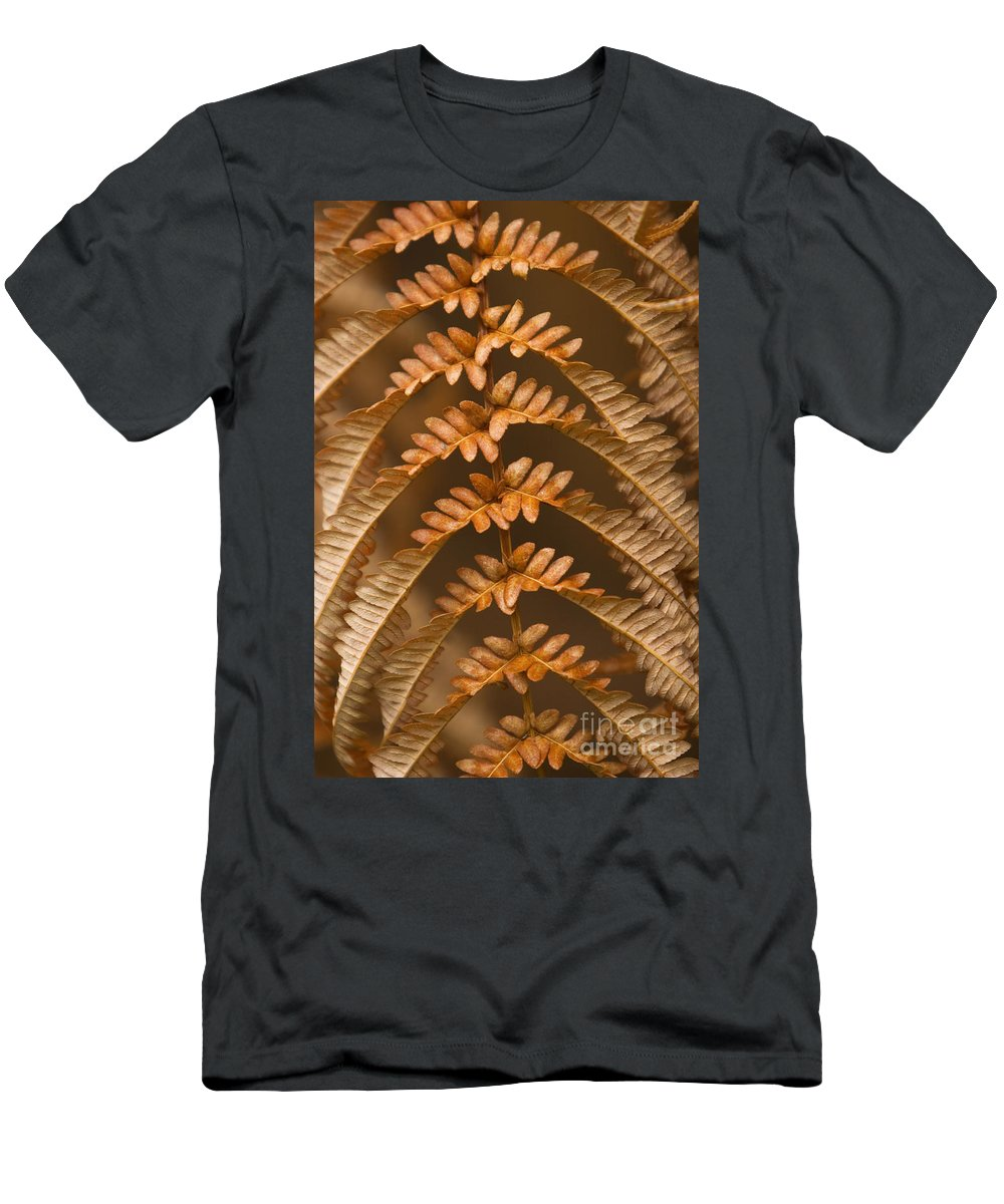 Abstract Men's T-Shirt (Athletic Fit) featuring the photograph Fern Abstract by Ron Dahlquist - Printscapes