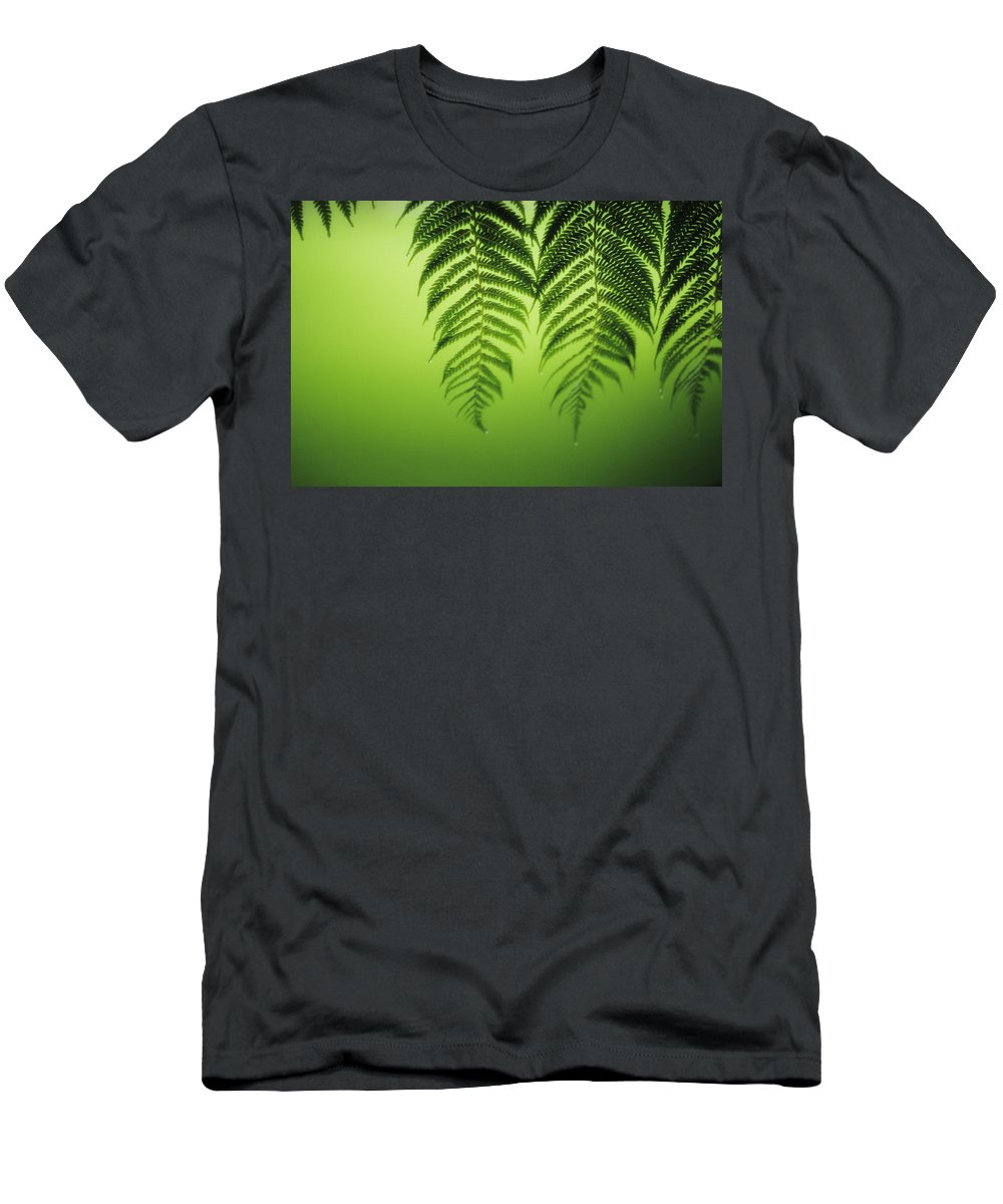 Beautiful Men's T-Shirt (Athletic Fit) featuring the photograph Fern On Green by Ron Dahlquist - Printscapes