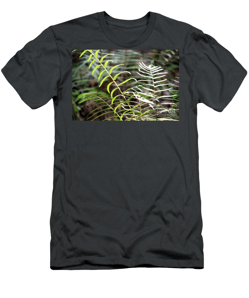 Ferns Men's T-Shirt (Athletic Fit) featuring the photograph Ferns In Natural Light by Carol Groenen